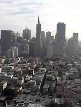 A photo taken from the top of Coit Tower.