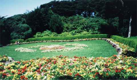 Large flower bed